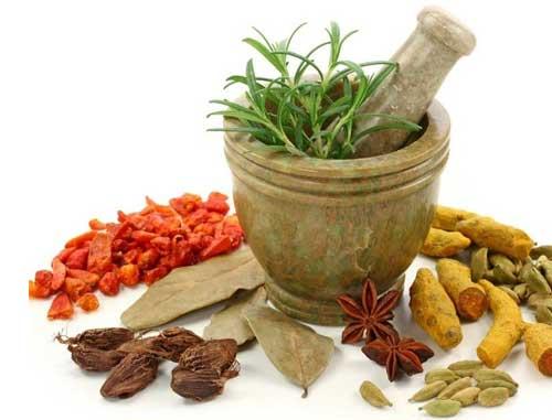 Hướng dẫn sử dụng thuốc đặc trị nấm da Hồng Sơn